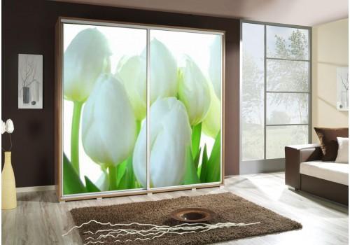 Šatní skříň s posuvnými dveřmi a obrázkem P - Tulipány